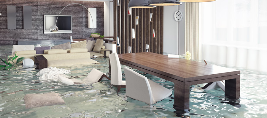 dégât des eaux